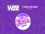 Wize Grape fanta
